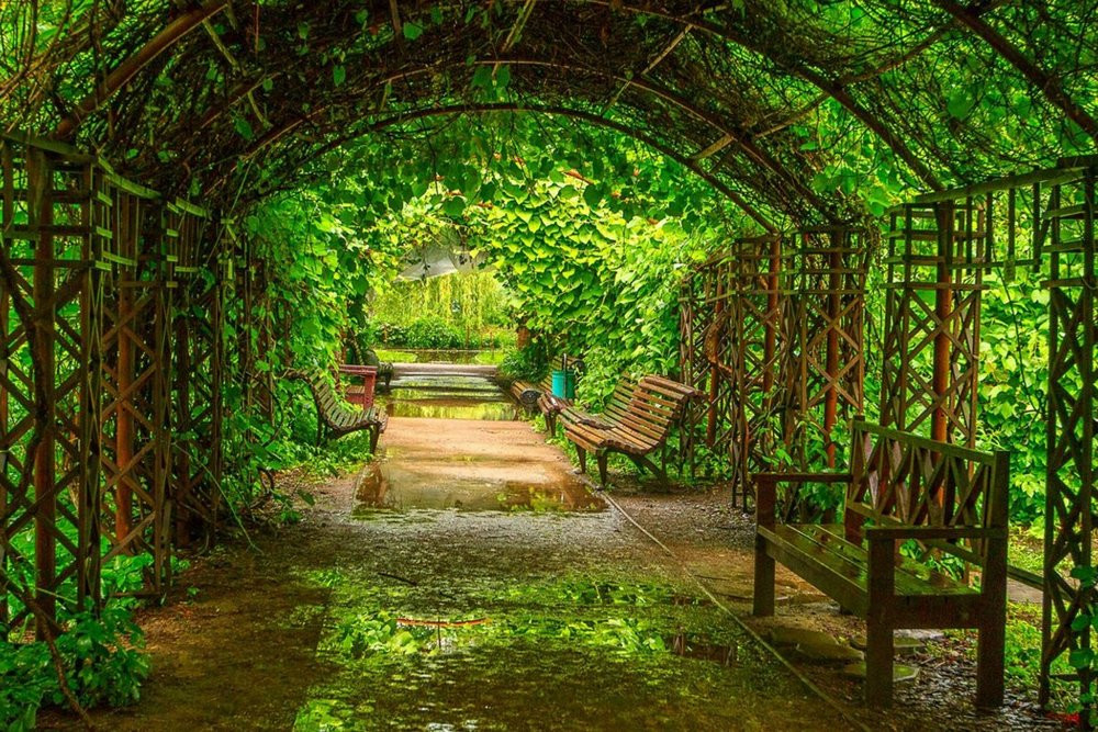 Москва клуб огород ночном клубе дон жуан